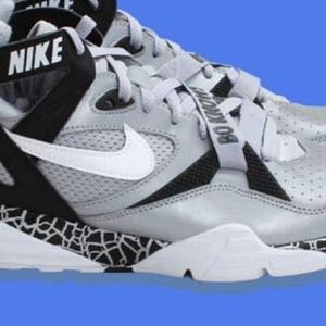 new product 066bb 80e9b Nike Shoes - Nike Air Trainer Max 91 Bo Jackson Oakland Raiders